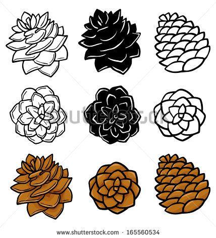428x470 144 Best Pinecones Images On Pine Cones, Water Colors