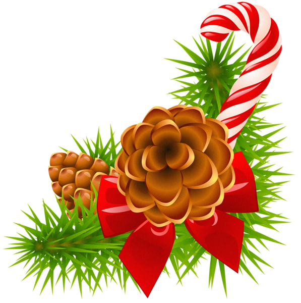 597x600 Christmas Pine Branch With Cones And Candy Cane Decor Holidays