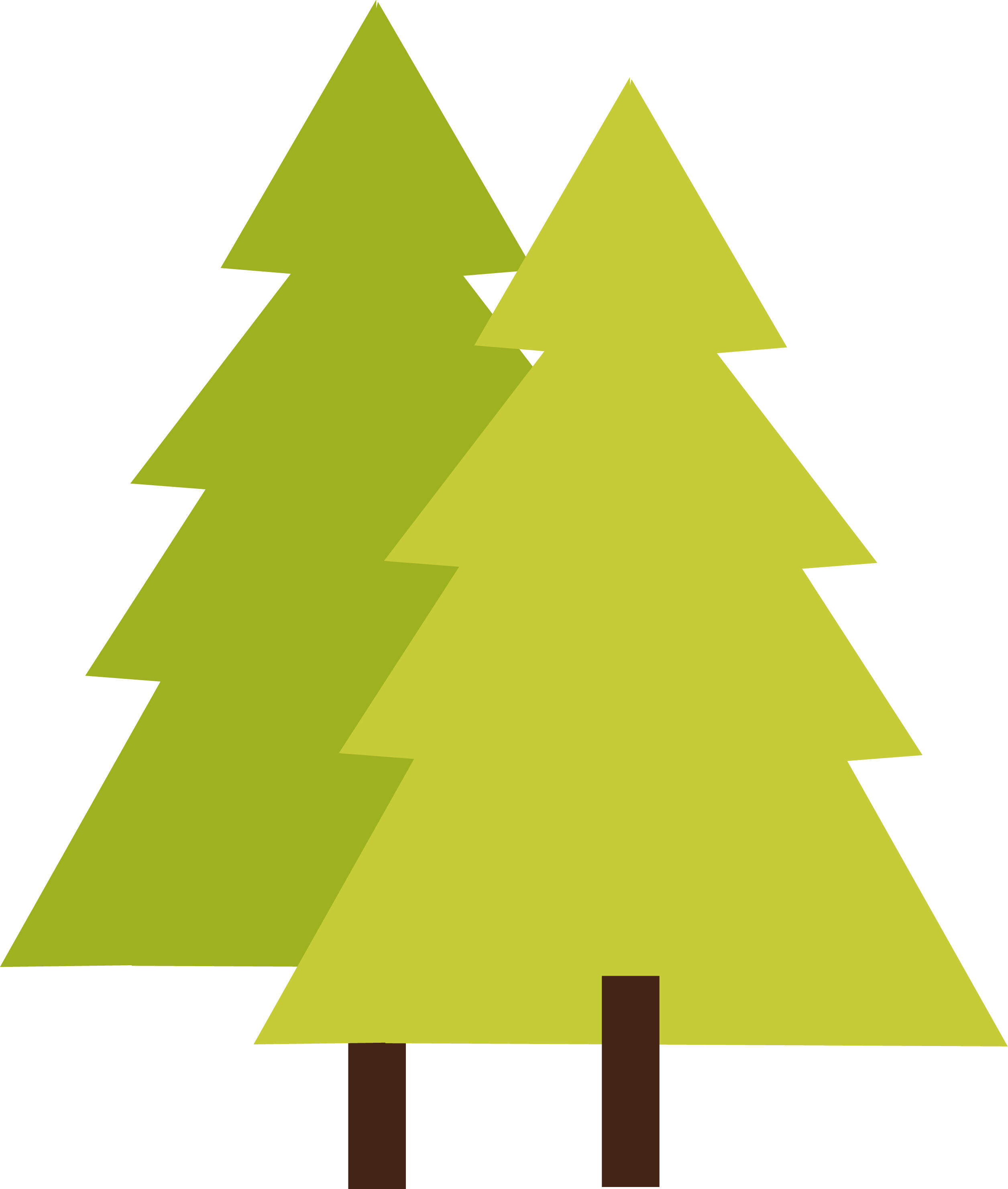 2511x2960 Tree Png Images Quality Transparent Pictures Png Only