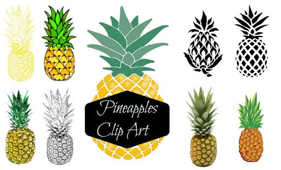 570x345 Instant Download Digital Clip Art