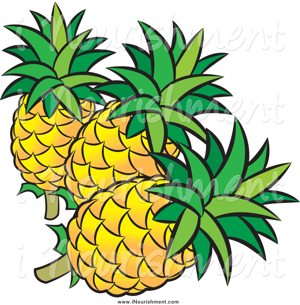 1024x1044 New Pineapple Clipart Collection