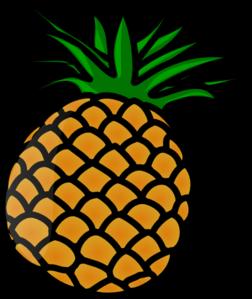 252x299 Pineapple Clip Art