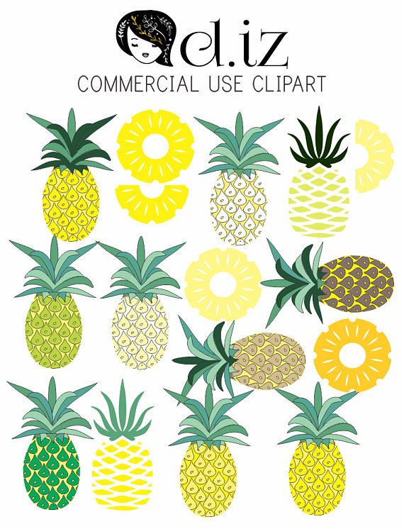 570x746 Pineapple Clip Art, Different Shades Of Pineapple And Pineapple