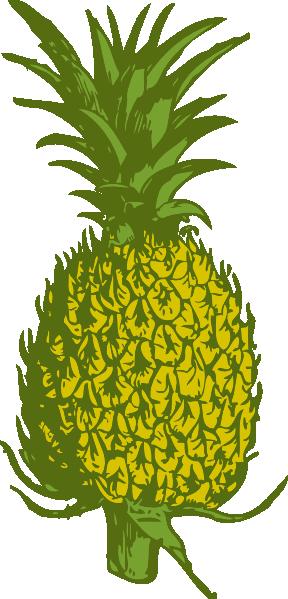 288x599 Pineapple Clip Art Free Vector 4vector