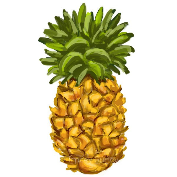 600x600 Pineapple Clip Art Free Clipart Images Clipartwiz 3
