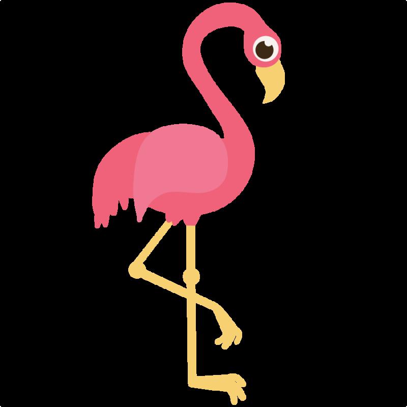 800x800 Top 84 Flamingo Clipart