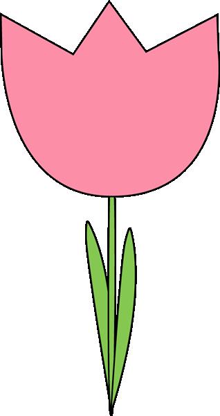 318x600 Tulip Clipart Pink Tulip