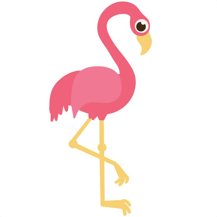 736x736 18inspirational Flamingo Clip Art Free