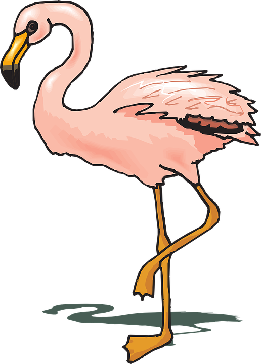 516x720 Flamingo Clipart Wings