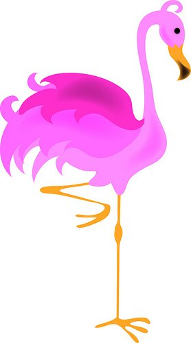 278x500 Flamingo Clip Art Free Free Collection Download And Share