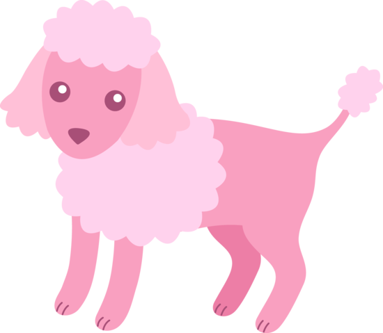 550x479 Cute Fluffy Pink Poodle