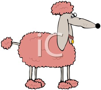 350x311 Royalty Free Clip Art Image Pink Cartoon Poodle