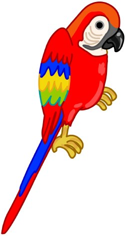 Pirate Parrot Clipart