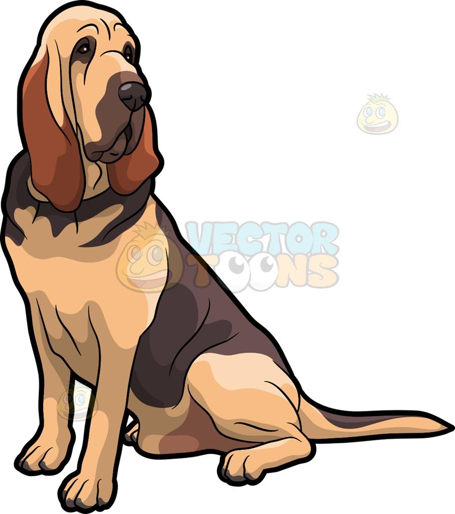 907x1024 Dark Brown Pitbull Dog. A Fierce Bloodhound Pet Dog Cartoon