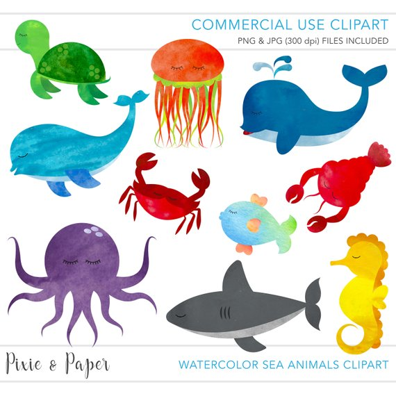 570x570 Commercial Use Clipart, Commercial Use Clip Art, Watercolor