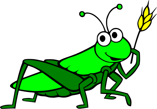 543x378 Drawn Grasshopper
