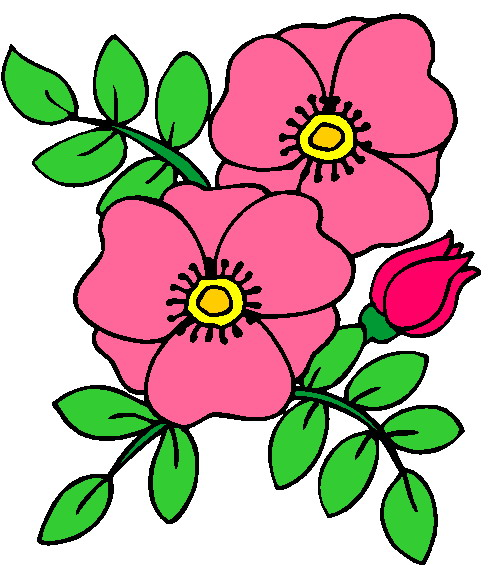 490x565 Flowers Clip Art Flowers And Plants