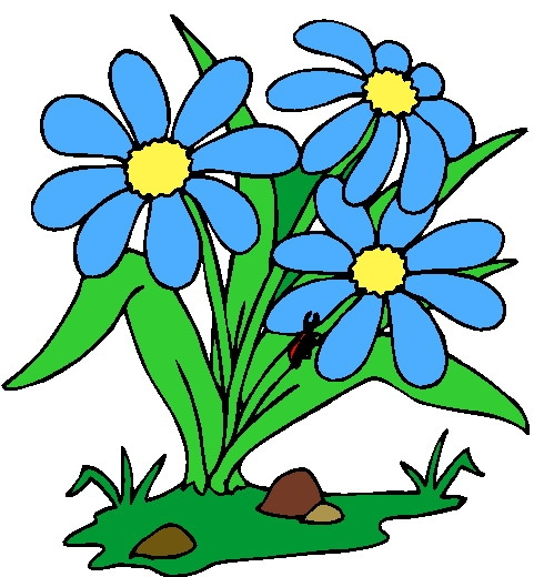 490x520 Planting Flowers Clipart