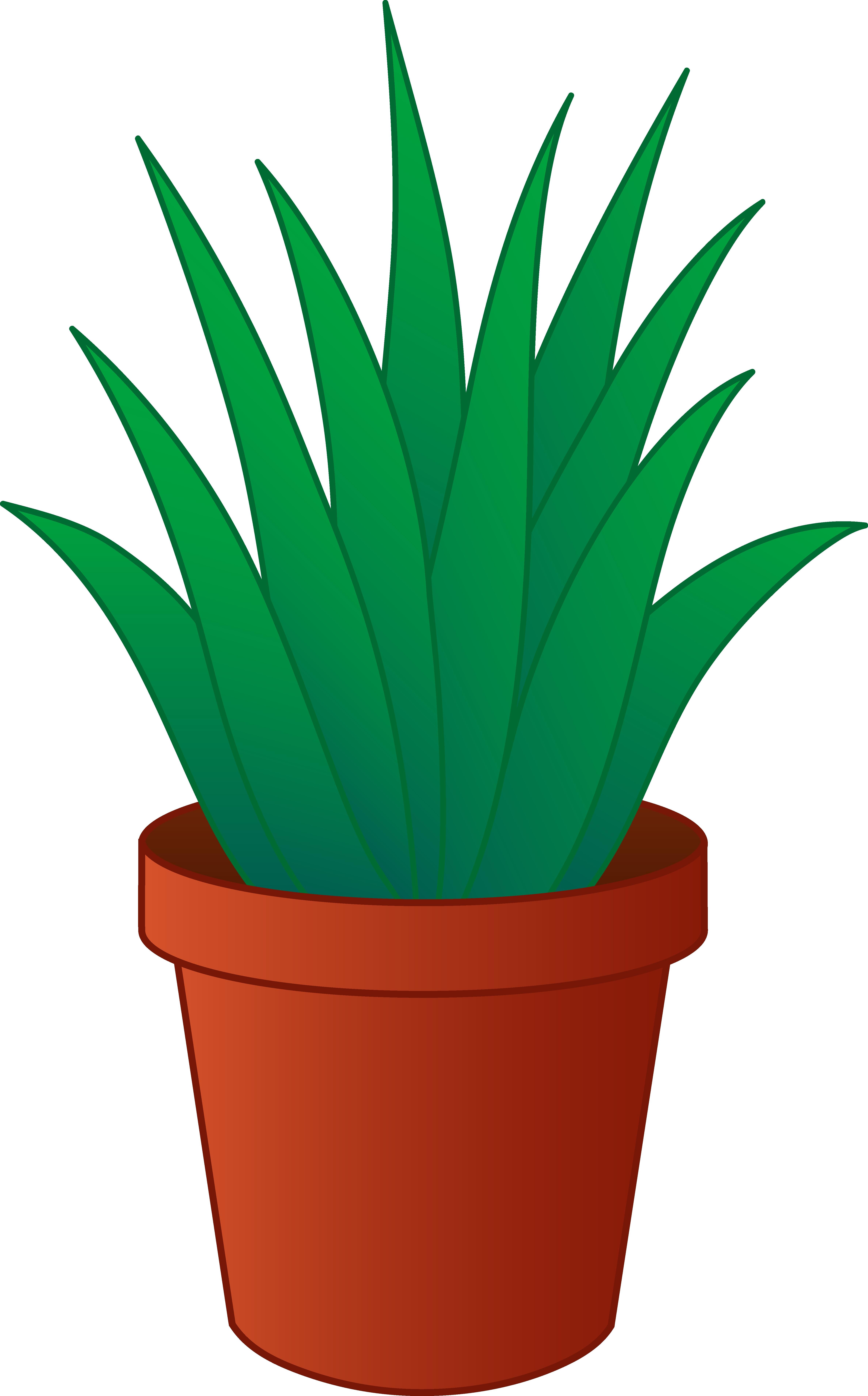 4752x7640 Best Of Plant Clipart Design