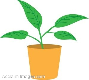300x269 Clip Art Of A Leafy Potted Plant