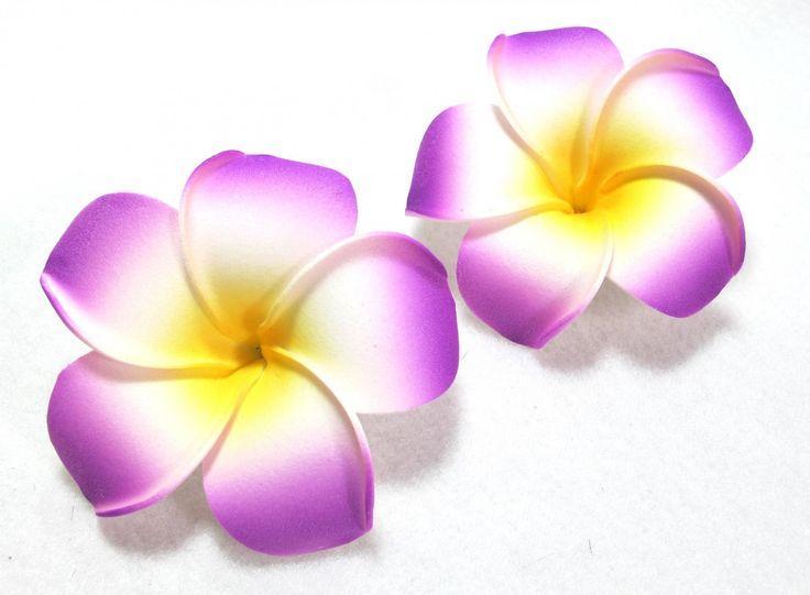 736x541 Plumeria Clipart Purple