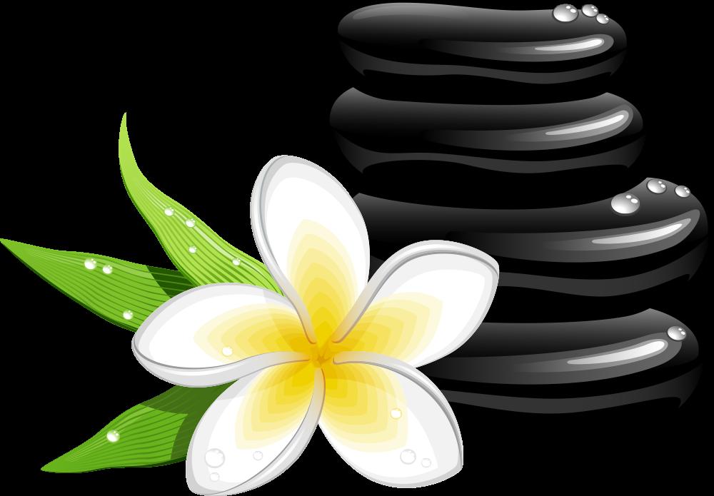 1000x695 Spa Cosmetology Massage Clip Art