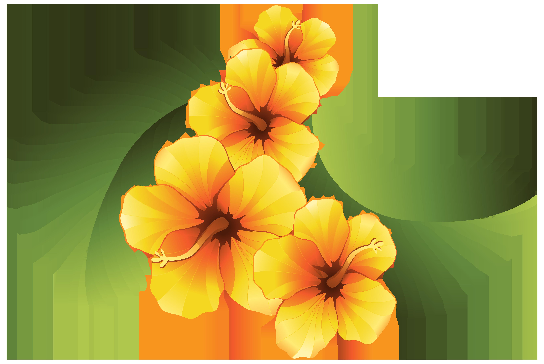 6000x4023 Exotic Floral Decoration Transparent Png Clip Art Image Flower
