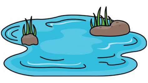 pond clipart at getdrawings com free for personal use pond clipart rh getdrawings com free clipart of pond clipart pont