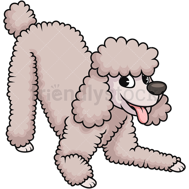 800x800 Happy Cream Poodle Dog Cartoon Vector Clipart