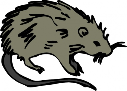 425x306 Free Download Of Mouse Rat Rodent Clip Art Vector Graphic