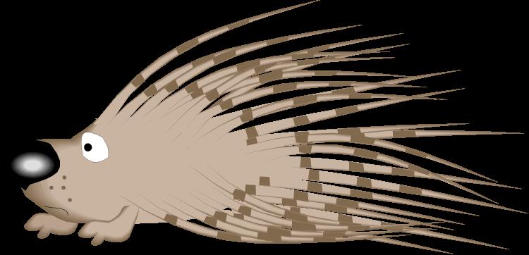 750x362 Porcupine Cliparts