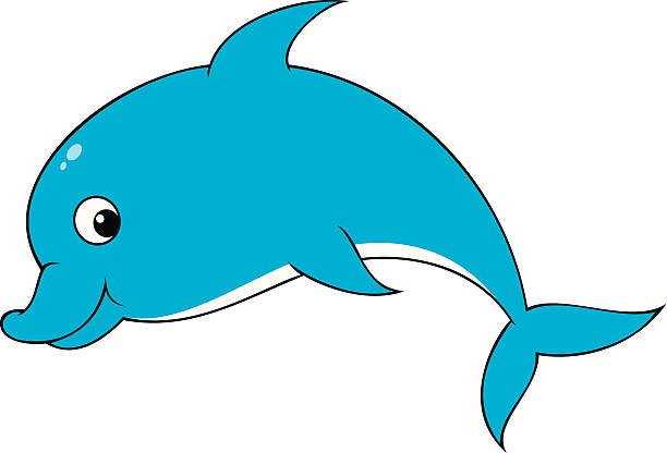612x416 Dolphin Clipart Funny