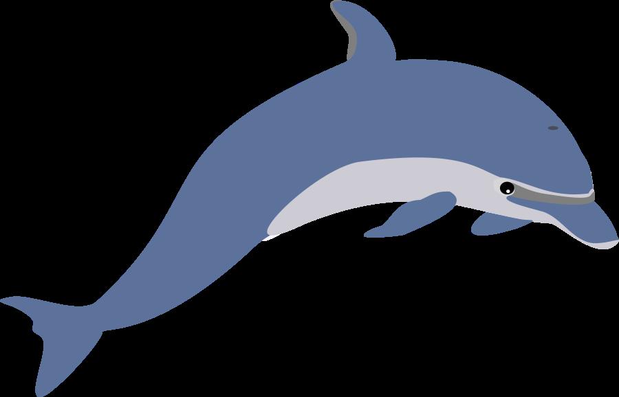 900x578 Dolphin Clipart Dolphin Clip Art Free Clipart Panda Free Clipart