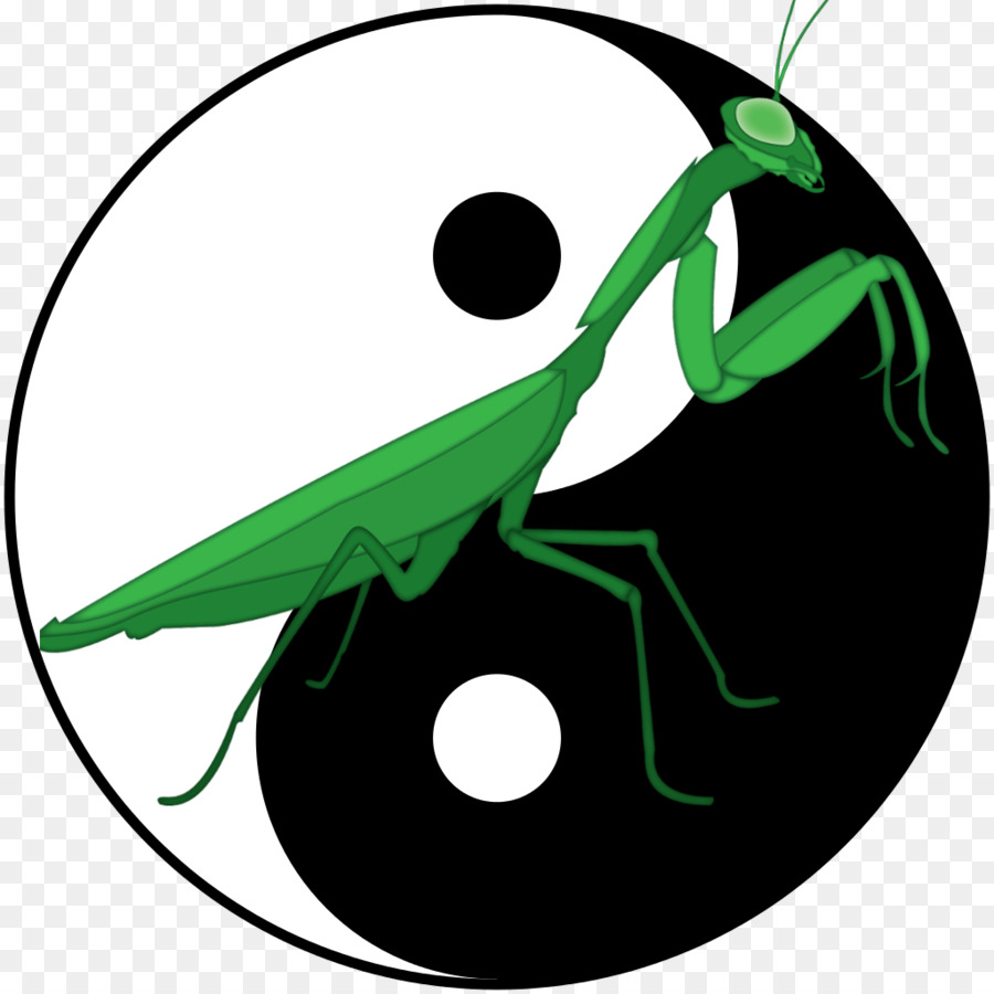 900x900 Northern Praying Mantis Chinese Martial Arts Shaolin Monastery
