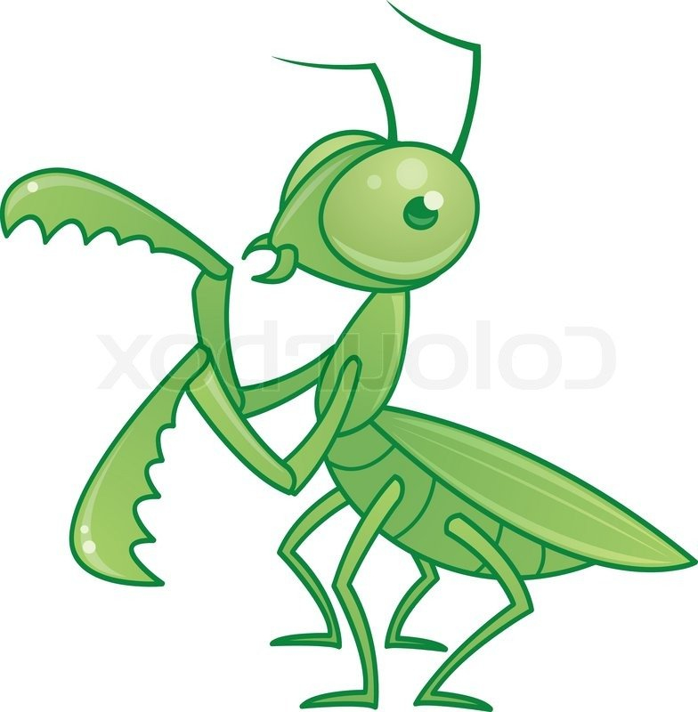 784x800 Praying Mantis Clipart Catterpillar 3818487