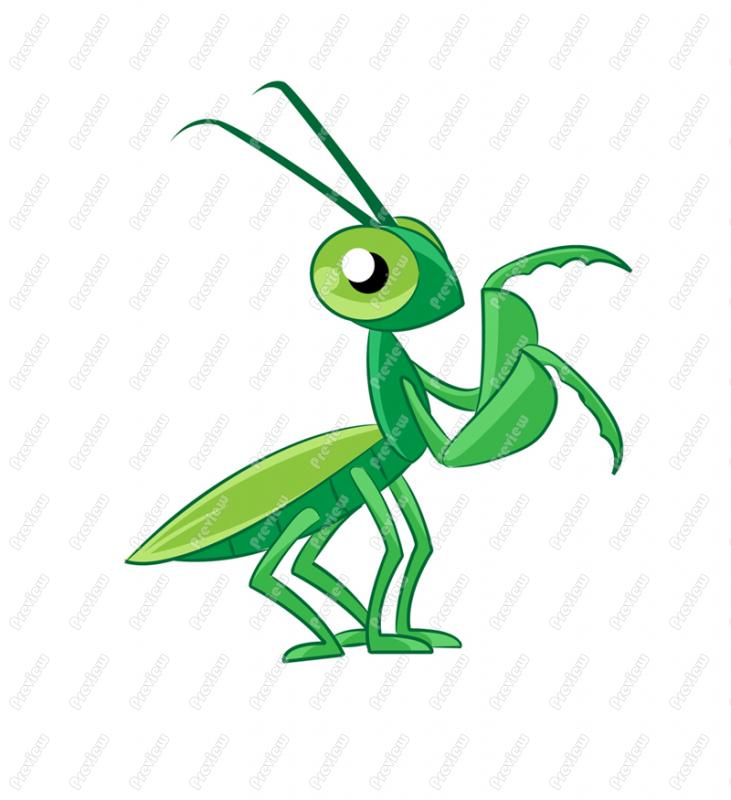 731x800 Praying Mantis Clip Art 10 Clipart Panda