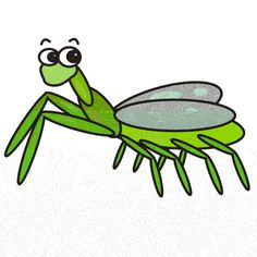 236x236 Praying Mantis Clipart Free