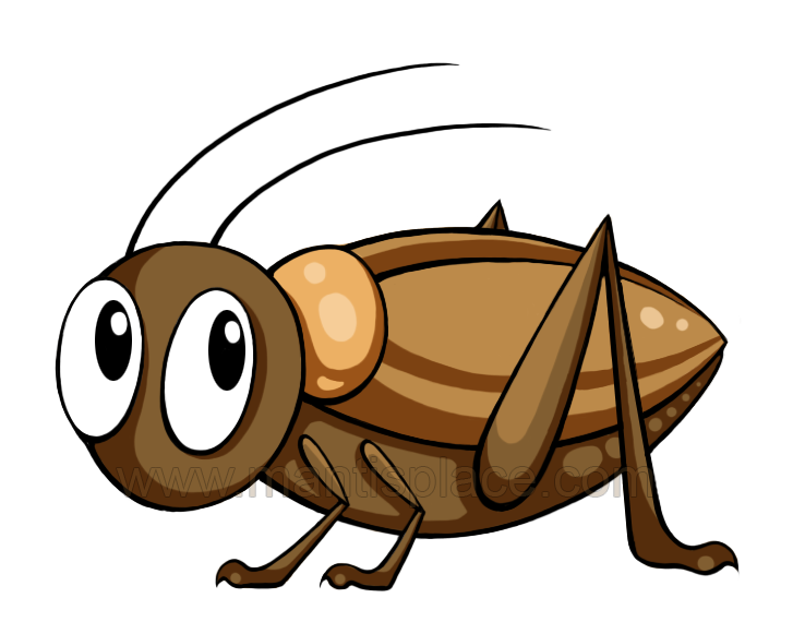 738x581 Brown Clipart Cricket