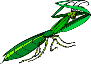 296x210 Cartoon Praying Mantis Clip Art
