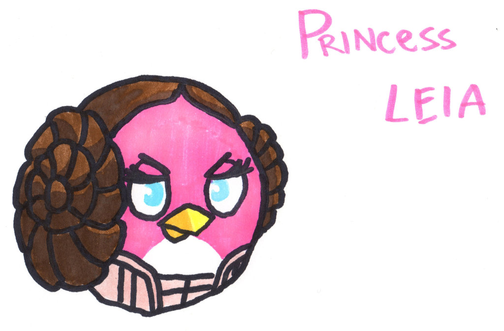 1024x672 Princess Leia Bird By Youcandrawit