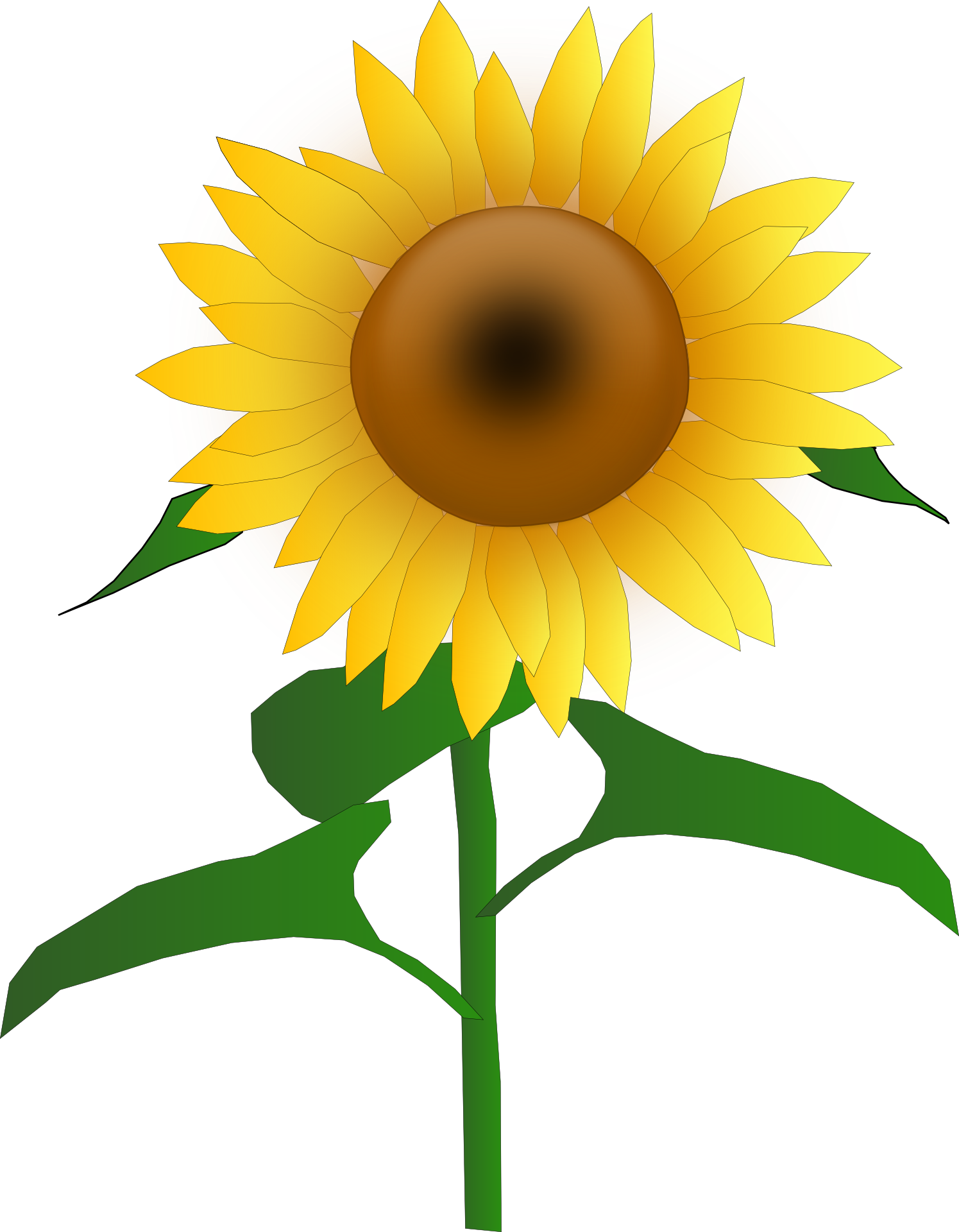 1495x1920 Alluring Sunflower Clipart Free 29 1035131 Paper Crafts Union Bankrc