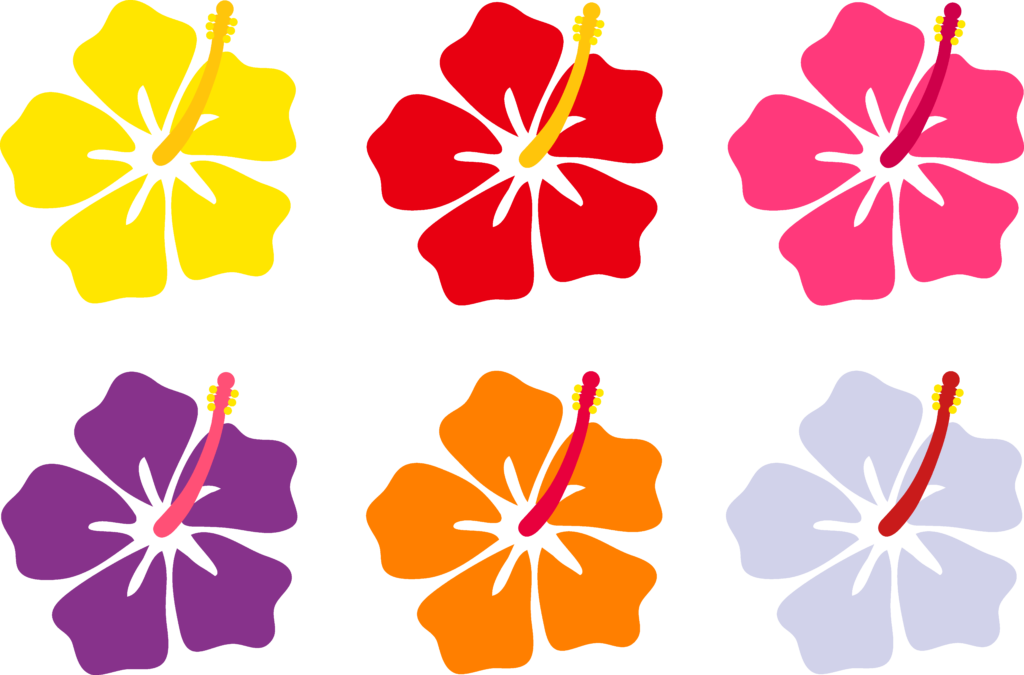 1024x675 Hawaii Flowers Cartoon Desktop Backgrounds