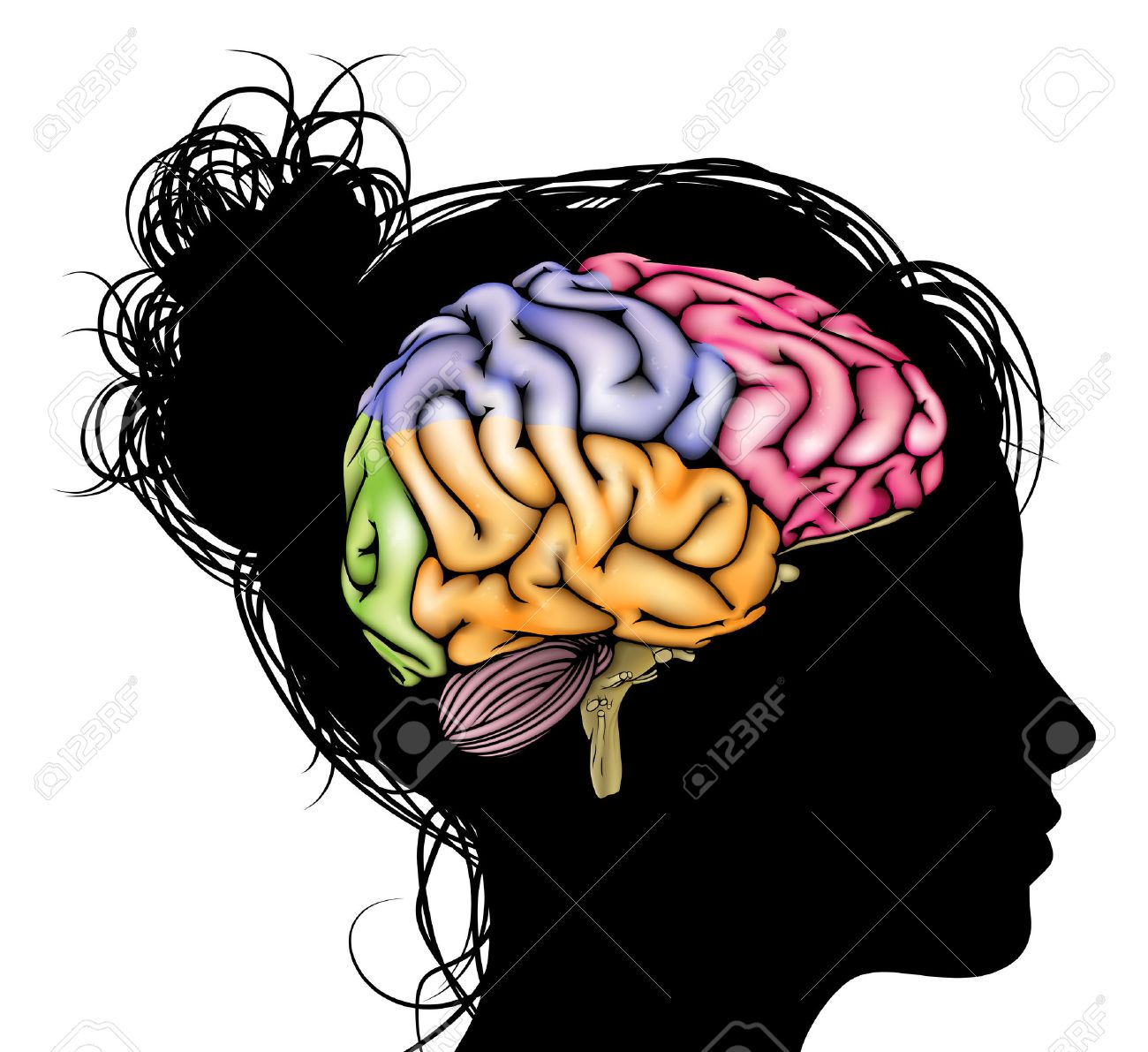 1300x1191 Psychology Brain Clipart Amp Psychology Brain Clip Art Images