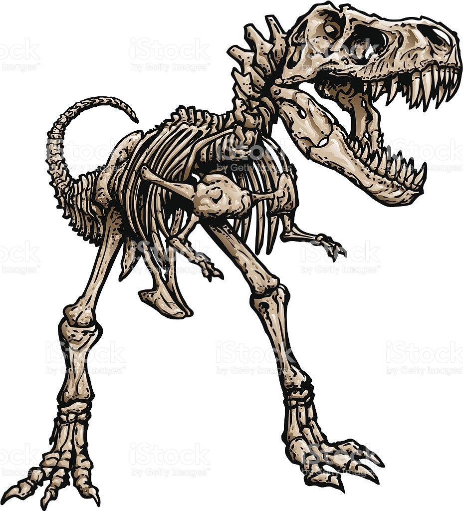 928x1024 T Rex Skeleton Clipart Amp T Rex Skeleton Clip Art Images