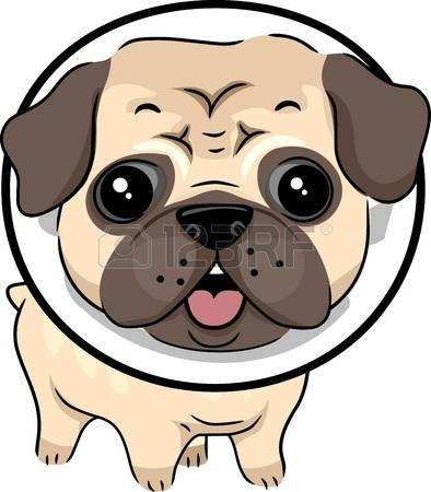 394x450 3 070 Pug Stock Vector Illustration And Royalty Free Pug Clipart