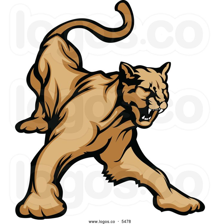 Puma Clipart
