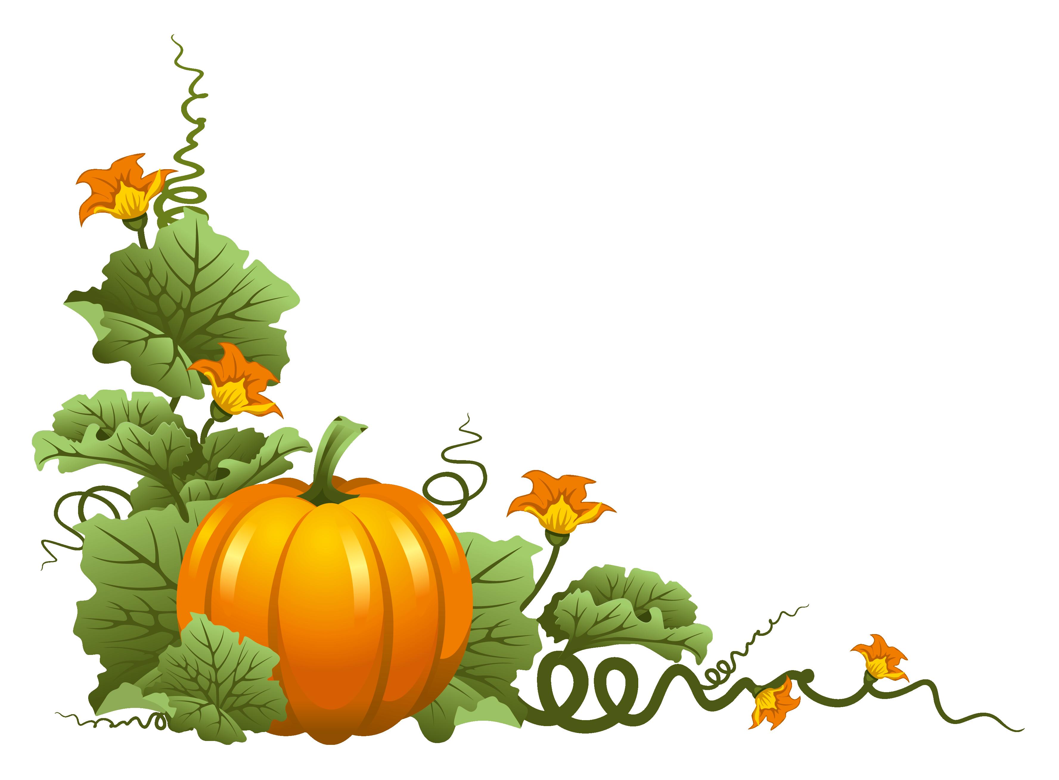 Pumpkin Outline Clipart At GetDrawings.com