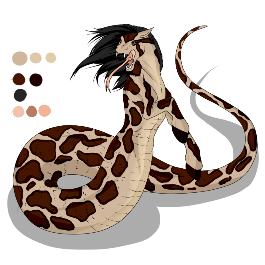 894x894 Collection Of Burmese Python Clipart High Quality, Free