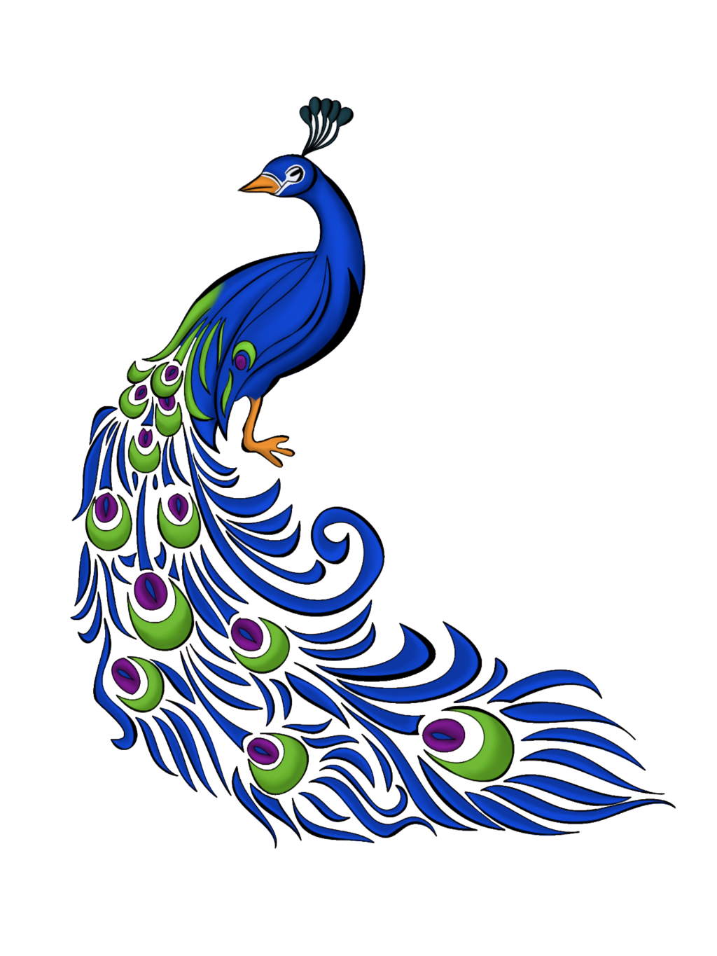 1024x1365 Peacock Quill Clipart
