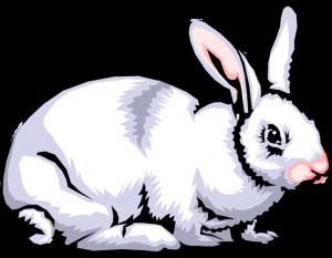 300x233 Rabbit Clipart Images Rabbit Clip Art Images Clipart Panda Free